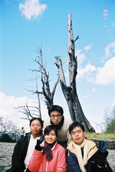03_F1010010_夫妻樹