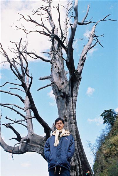 03_F1010020_夫妻樹