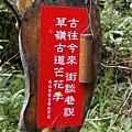 IMGP3646_草嶺古道芒花季
