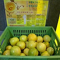 IMGP4896_御香屋-新鮮的葡萄柚