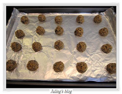 燕麥胚芽薄片餅乾4