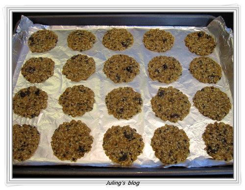燕麥胚芽薄片餅乾5