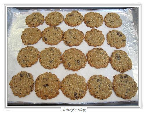 燕麥胚芽薄片餅乾7