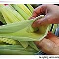 玉米粽13