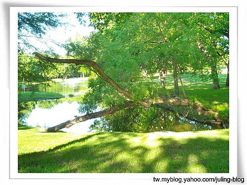 小湖畔幽靜天地3.jpg