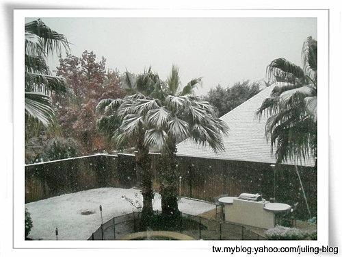 下雪了1.jpg