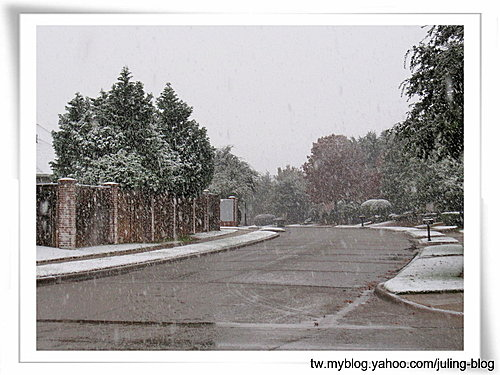 下雪了5.jpg