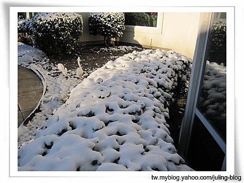 第一次白色耶誕6.jpg