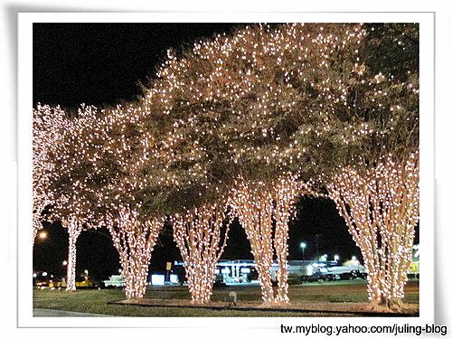 聖誕燈飾(一)2.jpg