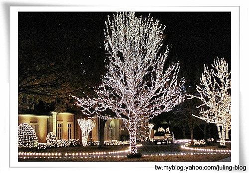 聖誕燈飾(一)3.jpg