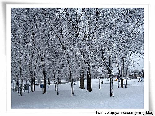 北德卅春雪24.jpg