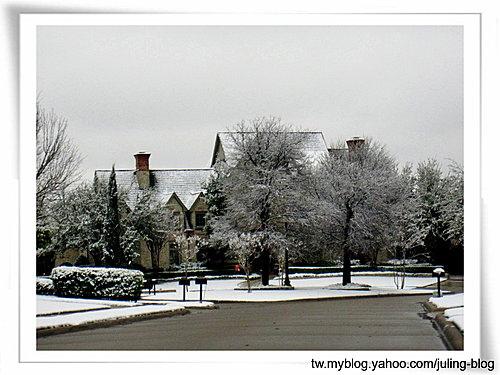 2011雪景1.jpg