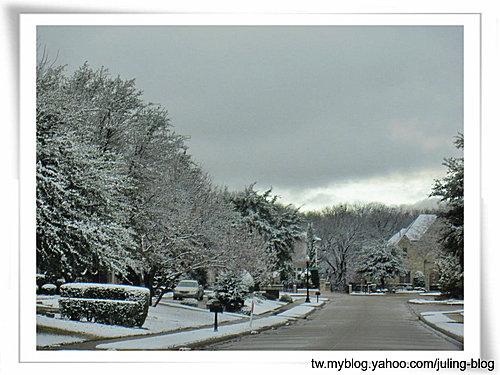 2011雪景4.jpg