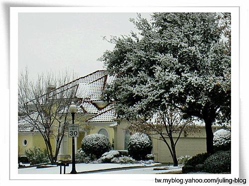 2011雪景5.jpg