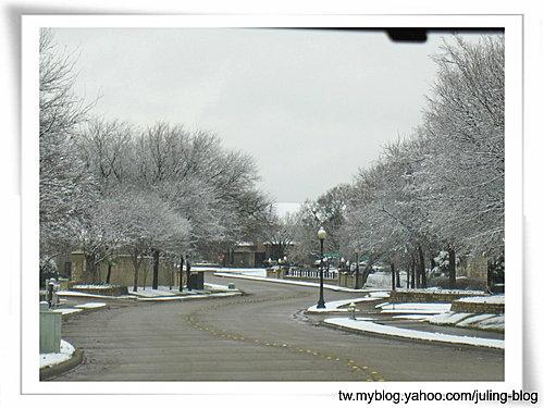 2011雪景8.jpg