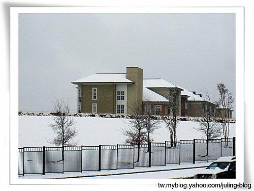 2011雪景12.jpg