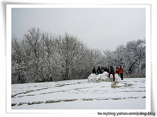 2011雪景15.jpg