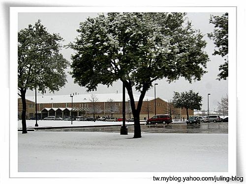 2011雪景16.jpg