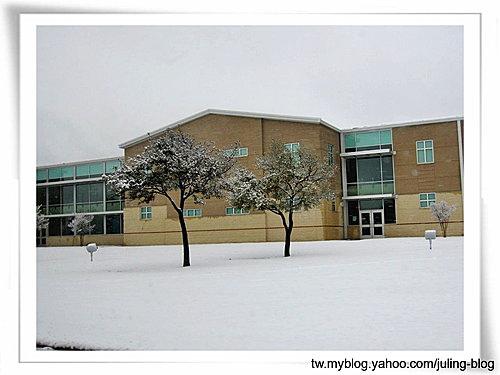 2011雪景17.jpg