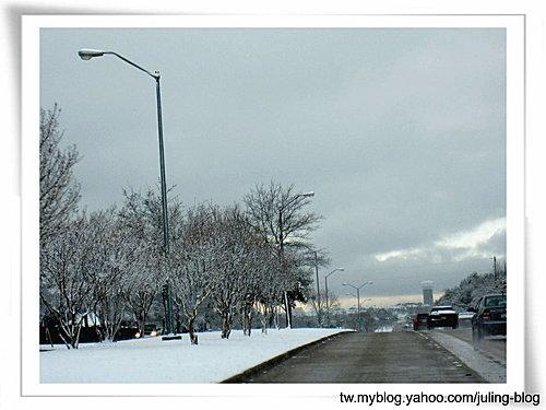 2011雪景19.jpg