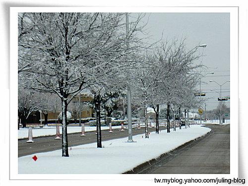 2011雪景21.jpg