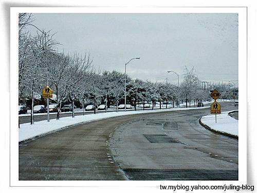 2011雪景23.jpg