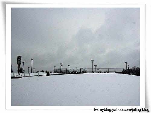 2011雪景25.jpg