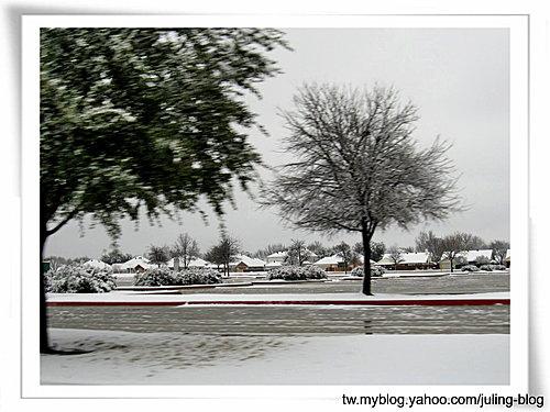 2011雪景27.jpg