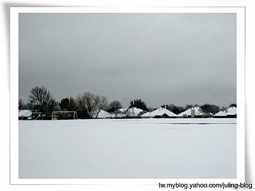 2011雪景26.jpg