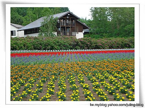 北海道之旅(二) 富田農場5.jpg