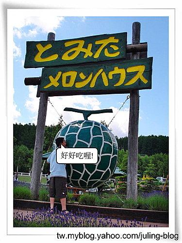 北海道之旅(二) 富田農場18.jpg