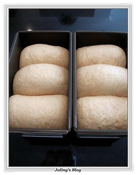 全麥蜂蜜牛奶土司做法9.JPG