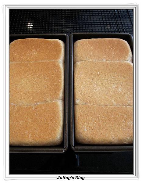 全麥蜂蜜牛奶土司做法10.JPG