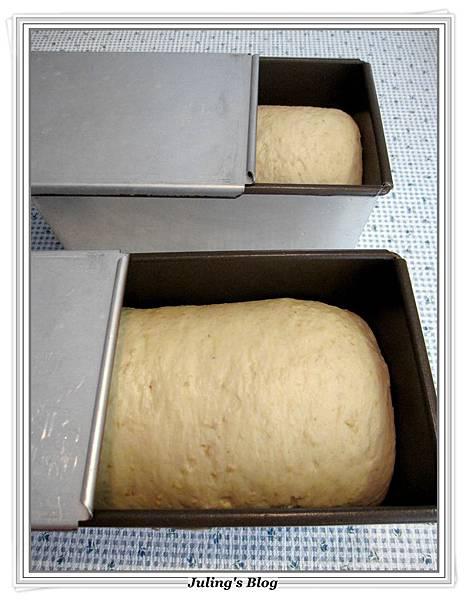 燕麥蜂蜜牛奶土司做法15.JPG