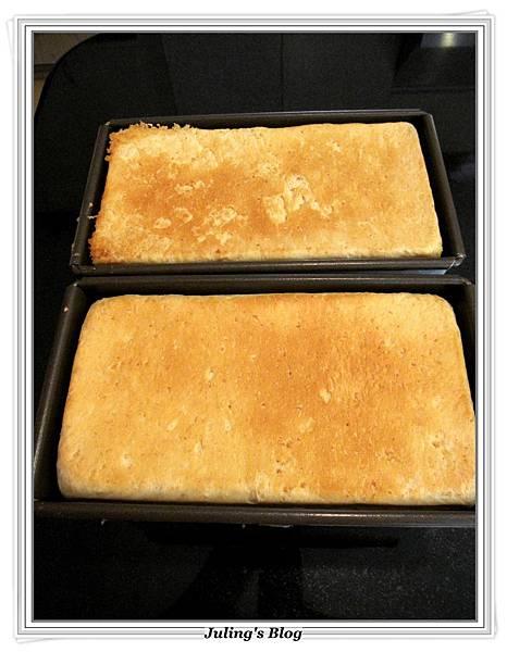 燕麥蜂蜜牛奶土司做法16.JPG