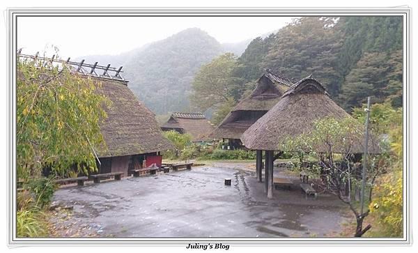 西湖里根場_191104_0007.jpg