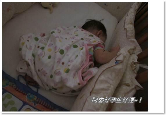 IMG_0002跪著睡著ㄌ