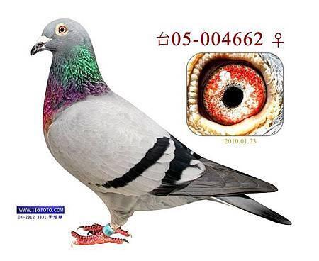 1463298_10200242712185517_1216265573_n[1]