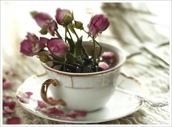 꾸미기_tea_rose