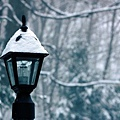 snow_covered_lamp