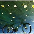 꾸미기_my_bike_fell_into_a_puddle