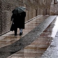 rainy dayruiPalma