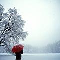 red_Umbrella