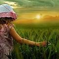Fields_Of_Dreams