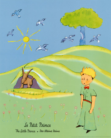 PR3004~The-Little-Prince-Posters.jpg