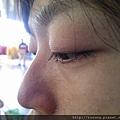 WP_004445.jpg
