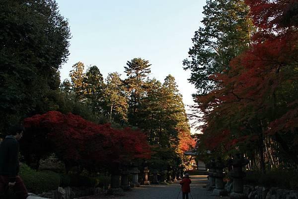 2014飯能-天覽山17