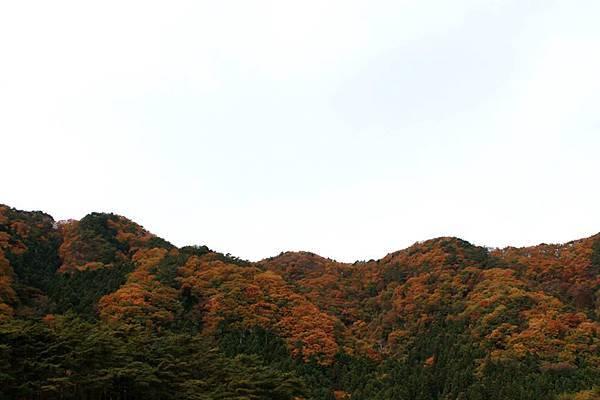 2014日光江戶村01