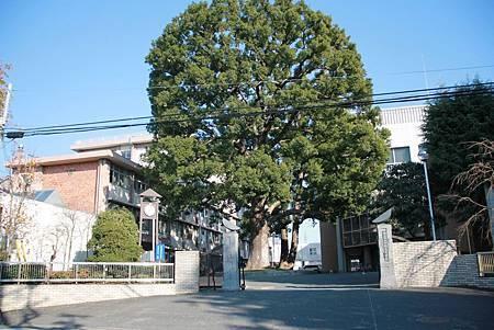 2017川越高校