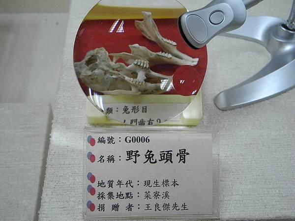 DSCN2479.JPG